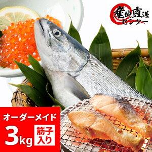 秋鮭 3kg 筋子300g入 オーダーメイド 北海道産 いくら加工対応 生 切身 塩加減 選択可 切り身加工対応 【 冷蔵 冷凍 生筋子 天然 沖獲り 生秋鮭 鮭 さけ サケ 秋さけ 筋子 いくら オーダー 切り