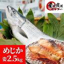 めじか鮭 2.5kg 前後 姿切身 20切前後 真空パック 少し訳あり 【 鮭児 ・ 時鮭 と並ぶ高級鮭 秋鮭 目近 メジカ めぢか…