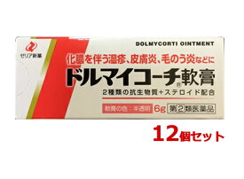 【送料無料】 ドルマイコーチ軟膏 6g×12個セット|指定第2類医薬品|ゼリア新薬