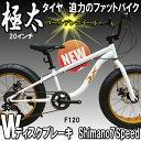 【送料無料】迫力の極太 ファットバイク Wディスクブレーキ 3D立体フレーム Shimno7Speed 20インチ20x4.1/4 FATBIKE SNOWBI...
