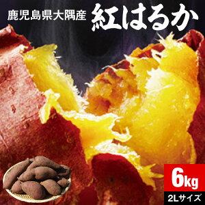 さつまいも 紅はるか 鹿児島 生芋 6kg 1箱 送料無料 2Lサイズ 土付き 美味しい 鹿児島県 大隅産 美容 ギフト べにはるか サツマイモ 焼き芋に まとめ買い