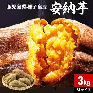 【P2倍】 安納芋 さつまいも 種子島産 生芋 3kg 1箱 送料無料 Mサイズ 土付き 鹿児島産 安納いも サツマイモ 美味しい 美容 ギフト 焼き芋に