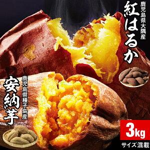 安納芋 & 紅はるか 食べ比べ さつまいも 鹿児島 各1.5kg 合計 3kg 1箱 送料無料 サイズ混載 美味しい 種子島産 安納いも 大隅産 べにはるか サツマイモ 焼き芋に ミックス