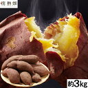 さつまいも 鹿児島県大隅産 紅はるか(生芋)約3kg 1箱【送料無料】熟成 からいも サイズおまかせ お試し