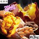 さつまいも 鹿児島県 安納芋&紅はるか(生芋)約3kg 1箱【送料無料】種子島・大隅産 からいも サイズおまかせ お試し