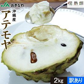 家庭用 JAおきなわ 沖縄産 アテモヤ 6〜8玉 2kg 1箱 送料無料 ギフト トロピカルフルーツ