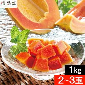 パパイヤ フルーツ 種なし 石垣島産 1kg(2〜3玉)送料無料 沖縄産石垣珊瑚 果物 国産 ギフト