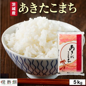 【P2倍】 【 当日出荷 】 米 白米 茨城産 あきたこまち 5kg ( 5kg 1袋 ) 令和2年産 送料無料 お米 精米 ごはん ご飯