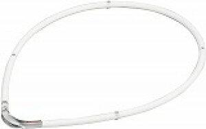 ファイテン(phiten) ネックレス RAKUWA 磁気チタンネックレスS-?? ホワイト×クリア 45cm