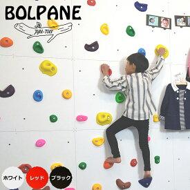 BOLPANE ボルダリングパネル ボルパネ カラー 910×606×18(3枚セット)爪付きナット付き★大型便★【じゅうたす 住+】-SS