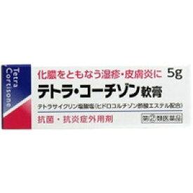 【第2類医薬品】テトラ コーチゾン軟膏 5g【湿疹】【皮膚炎】