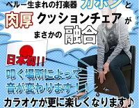 【送料無料】カホンチェア日本製日本本Bookブック