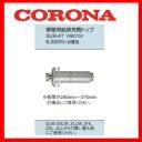 Corona0043