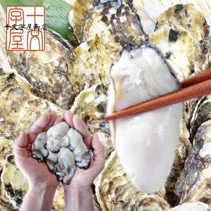 広島県産牡蠣むき身 1kg NET850g 使い道豊富な中粒Mサイズ約50粒前後 送料無料 冷凍 かき カキ 加熱用 牡蠣鍋 ギフト 敬老の日 お歳暮 お中元 あす楽