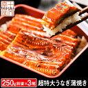 うなぎ 蒲焼き 国産ではございませんがふっくら柔らか 肉厚 超特大 三尾セット 250g前後×3 6〜9人前 ウナギ 鰻 たれ…