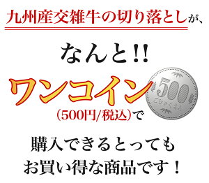 【訳あり】【国産牛】九州交雑牛切り落とし250g