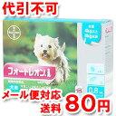 【動物用医薬品】 フォートレオン 0.8mL 4kg〜8kg 1箱3ピペット ゆうメール送料80円
