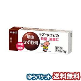 【第3類医薬品】 明治軟膏 5g メール便送料無料_