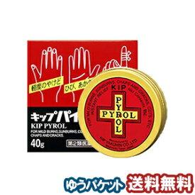 【第2類医薬品】キップ薬品 キップパイロールHi 40g メール便送料無料_