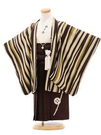 【レンタル】【袴】七五三 男の子 着物0287 清武ブラウンベージュ縞fy16REN07