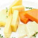【送料無料!】 大人の熟成5種類のハードチーズセット