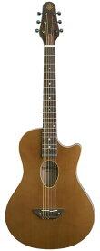 ESP BambooInn-K《Charプロデュース・コンパクトナイロン弦アコースティックギター》【送料無料】(ご予約受付中)