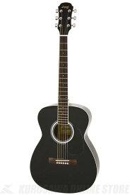 Legend FG-15 BK(Black) 《アコースティックギター》【初心者向け】【ソフトケース付属】