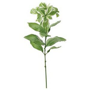 ユーフォルビア【観葉植物 造花 SC(CT)触媒・光触媒フェイクグリーン】[G-L]