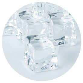 PVアイスL(キューブ) 500g(約35個) アクリル製 氷 食品サンプル