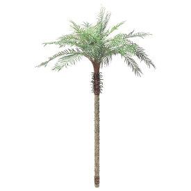 【観葉植物 造花】大型 フェニックスパームツリー LL 255cm 【人工観葉植物 フェイクグリーン 光触媒 CT触媒 インテリア】[G-L]