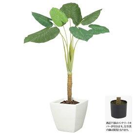 【観葉植物 造花 大型】クワズイモ L170cm 【人工観葉植物 フェイクグリーン 光触媒 CT触媒 インテリア】[G-L]