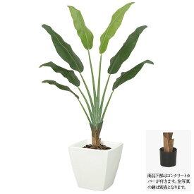 【フェイクグリーン】トラベラーパームツリー トラベラーズパーム 145cm 【人工観葉植物 大型 観葉植物 造花 光触媒 CT触媒 インテリア】[G-L]
