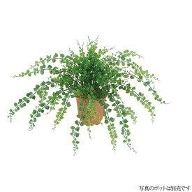 【観葉植物 造花】屋外対応 アジアンタムブッシュ 48cm 【人工観葉植物 フェイクグリーン 光触媒 CT触媒 インテリア】[G-L]
