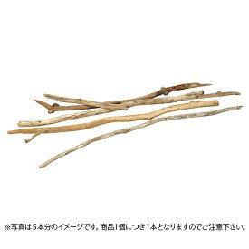 アルプス流木細枝(L) バラ1本 自然素材 [G-L]