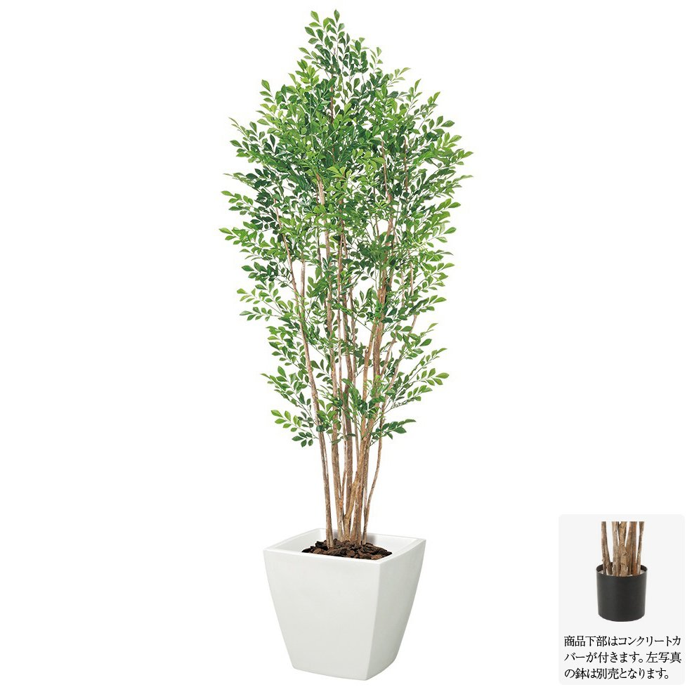 【人工観葉植物 大型】プレミアムトネリコツリー 170cm ナチュラルトランク 【観葉植物 造花 フェイクグリーン 光触媒 CT触媒 インテリア】[G-L]