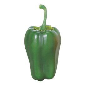 ピーマン(3ケ/パック) グリーン 食品サンプル[G-L]