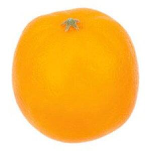 オレンジ 食品サンプル[G-L]