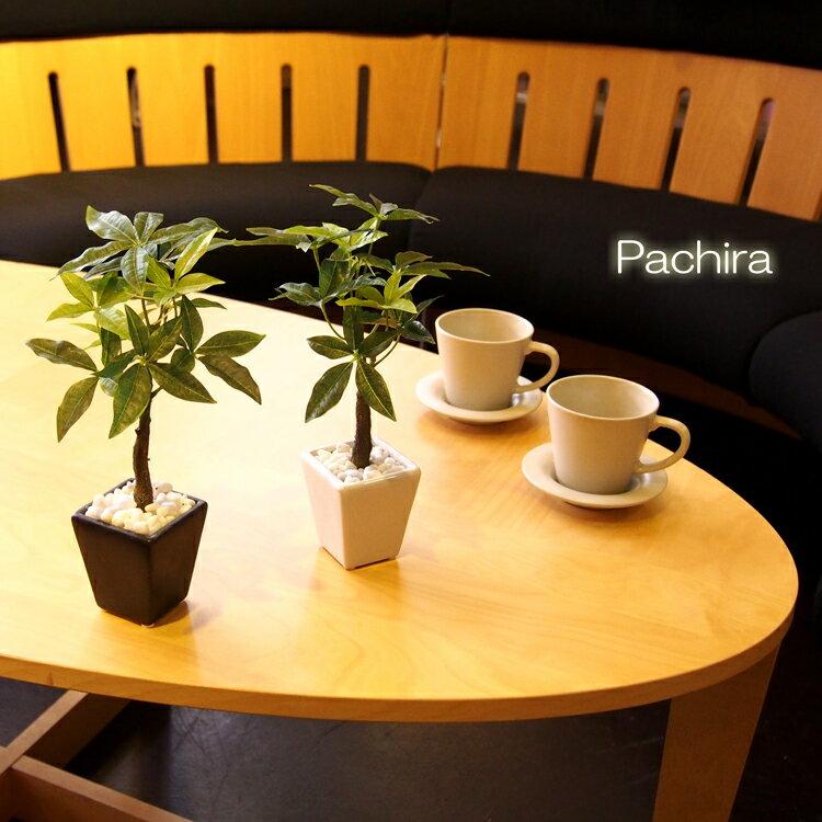 フェイクグリーン ミニ パキラ 小鉢【観葉植物 造花 ミニ フェイク グリーン 光触媒 SC/CT触媒 インテリア テーブル】