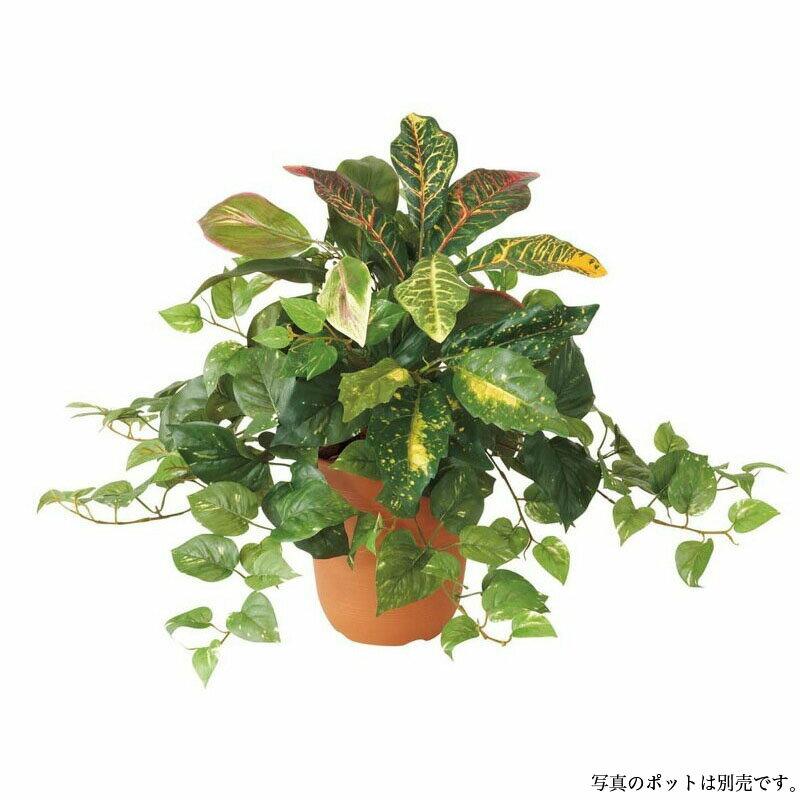 ポトスクロトンミックスブッシュ(168) 55cm【観葉植物 造花 CT触媒/光触媒 フェイクグリーン】[D-F]鉢セット可能商品
