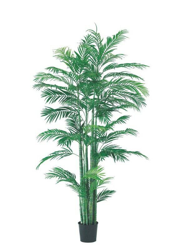 210cmアレカパームツリー【観葉植物 造花 CT触媒/光触媒 フェイクグリーン】[D-F]