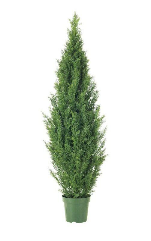 グリーンシダーツリー 150cm【観葉植物 造花 大型 フェイクグリーン CT触媒/光触媒】[D-F]