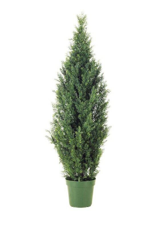 【フェイクグリーン 大型】グリーンシダーツリー 180cm【観葉植物 造花 CT触媒/光触媒 フェイク グリーン】[D-F]