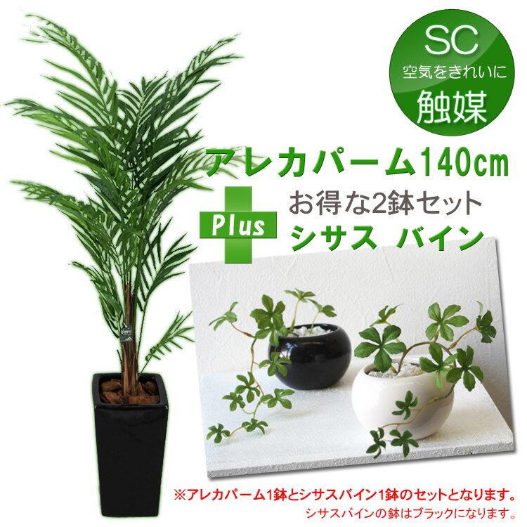 アレカパーム(アレカヤシ・フェニックスパーム)M鉢とシサスバインのセット(光触媒より優れたSC/CT触媒 インテリア)【フェイクグリーン 人工観葉植物 造花】