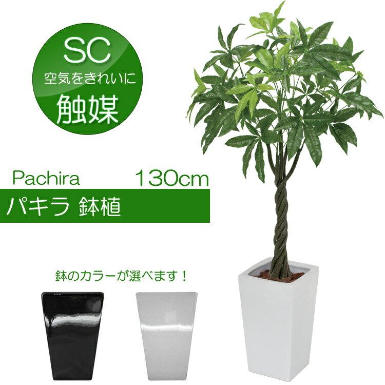【陶器鉢】パキラ鉢植え130cm(光触媒より優れたCT触媒/SC触媒/インテリア/お祝い)【フェイクグリーン 観葉植物 造花】