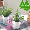 【造花 】ミルク缶 グリーンアレンジ ミニグリーン ブリキ 【フェイクグリーン】