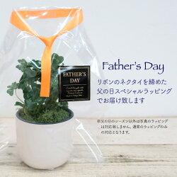 【父の日造花】ラッキー・クローバー・ポット幸せを運ぶ四つ葉のクローバー【プレゼントフェイクグリーンミニ観葉植物光触媒SC/CT触媒インテリアテーブル】[fd]