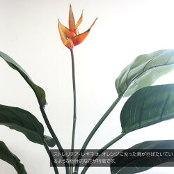 フェイクグリーン大型ストレリチアレギネ130cm鉢植極楽鳥花ストレチア【観葉植物造花光触媒SC/CT触媒人工観葉植物フェイクグリーン】