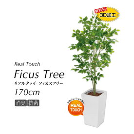 【観葉植物 大型 造花】フィカスツリー 170cm 鉢植 リアルタッチCT触媒 SC触媒 光触媒 フェイクグリーン 人工 インテリア お祝い