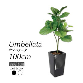 人工観葉植物 フェイクグリーン 観葉植物 造花 光触媒 大型 ウンベラータブランチ 100cm 鉢植 インテリア おしゃれ フェイク グリーン CT触媒 消臭 抗菌 お祝い