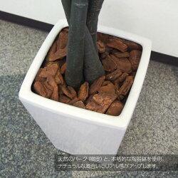 パキラツリー180cm観葉植物フェイクグリーン人工観葉植物光触媒造花CT触媒インテリアフェイクグリーン【送料無料】